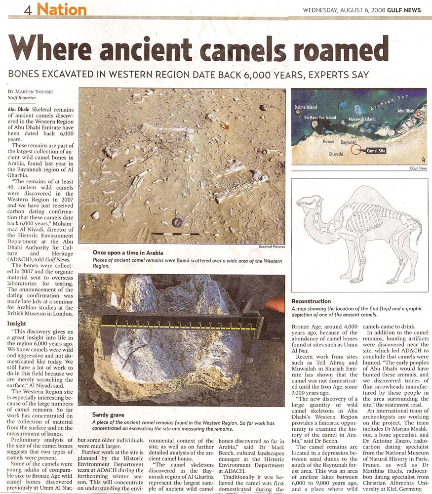 Gulf News, 6 August 2008, page 4