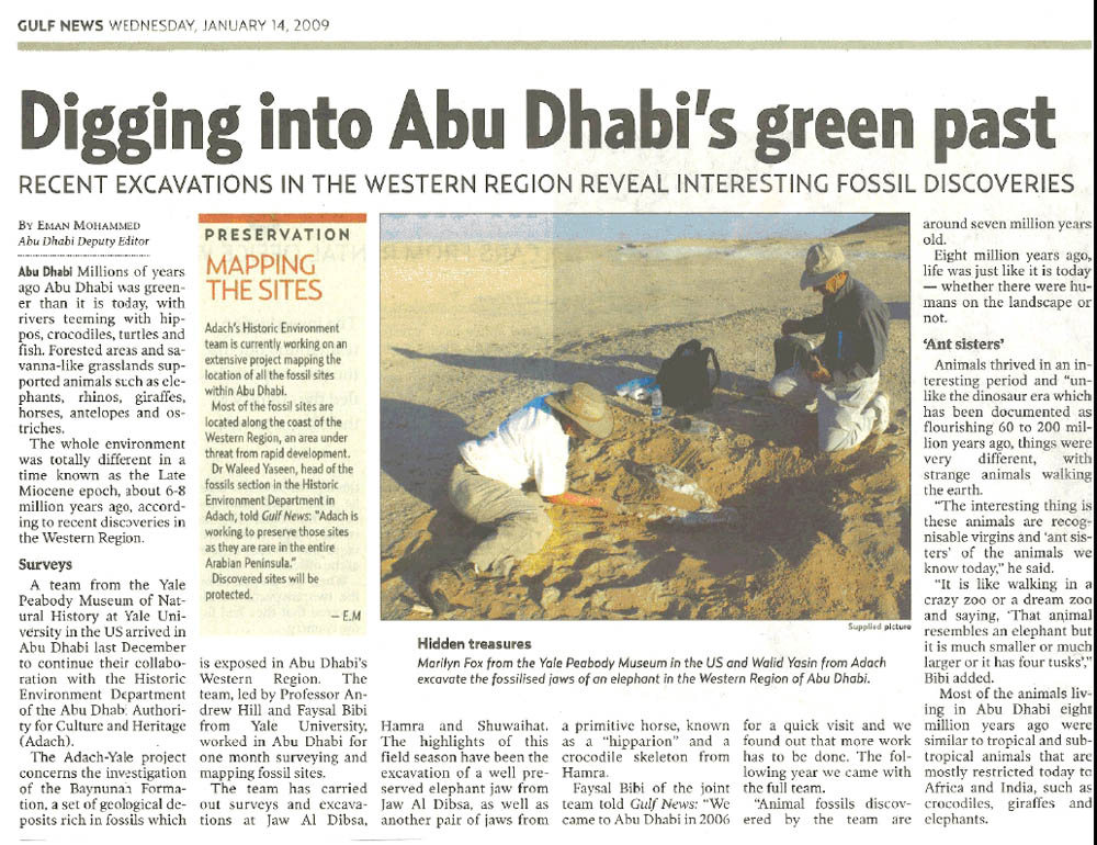 Gulf News, 14 January 2009